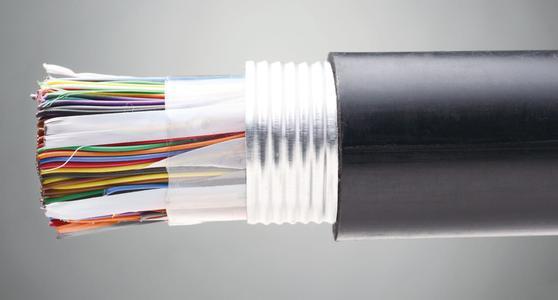 100对大对数通信电缆